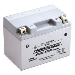 PTZ5S AGM Power Sports Battery