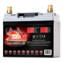 Fullriver Full Throttle FT438 AGM Battery, Group Size U1R