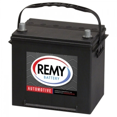 Group Size 25 Battery