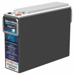 NorthStar SMS-AGM 220 Battery