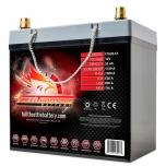 Fullriver Full Throttle FT620 AGM Battery, Group Size 51